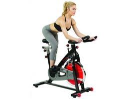 Sunny Health & Fitness Belt Drive Indoor Cycling Bike Grey SF-B1002